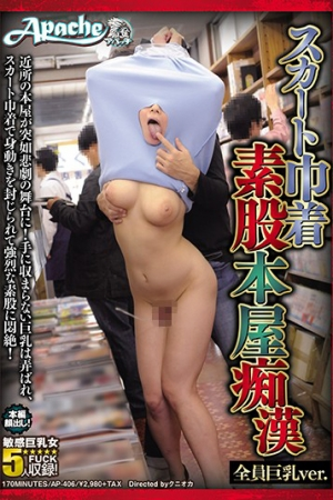 AP-406 Skirt Purse Intercrural Sex Bookstore Molester All Busty Ver. - Cover
