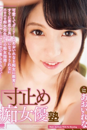HODV-21185 Dimensions Stop Addicted Actress Cram Rena <u><strong>Aoi</strong></u> - Cover