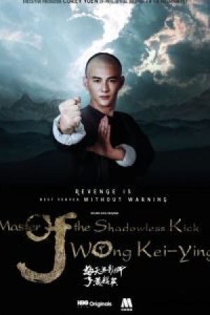 The Shadowless Kick Wong Kei-Ying (2017) ยอดยุทธ พ่อหนุ่มไร้เงา  - Cover