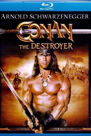 Conan the Destroyer โคแนน ตอนถล่มวิหารเทพเจ้า - Cover