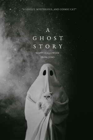 A Ghost Story (2017) ผียังห่วง - Cover