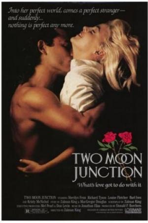 ช๊อตเด็ด Hollywood Movie Nude Scenes 7 Two Moon Junction [1988] - Cover