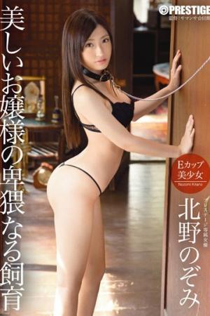 ซับไทย ABP-254 Nozomi Kitano สี่ซีนทรมานสะท้านทรวง